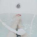 【免疫力アップ・リラックスにおすすめ入浴方法】温度や時間で作用が変わる?疲労回復・美容効果・健康な身体づくり!#横浜#鶴ヶ峰#美容室#ヘアサロン